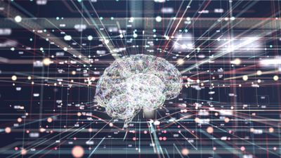 An artificial intelligence, indicated by a brain, with information in dots and dashes flowing toward it.