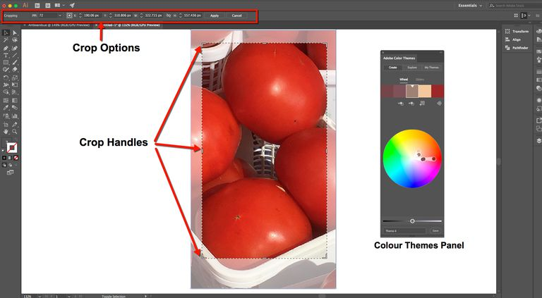 The Illustrator Crop Options and handles are highlighted and the new Colour themes panel is shown