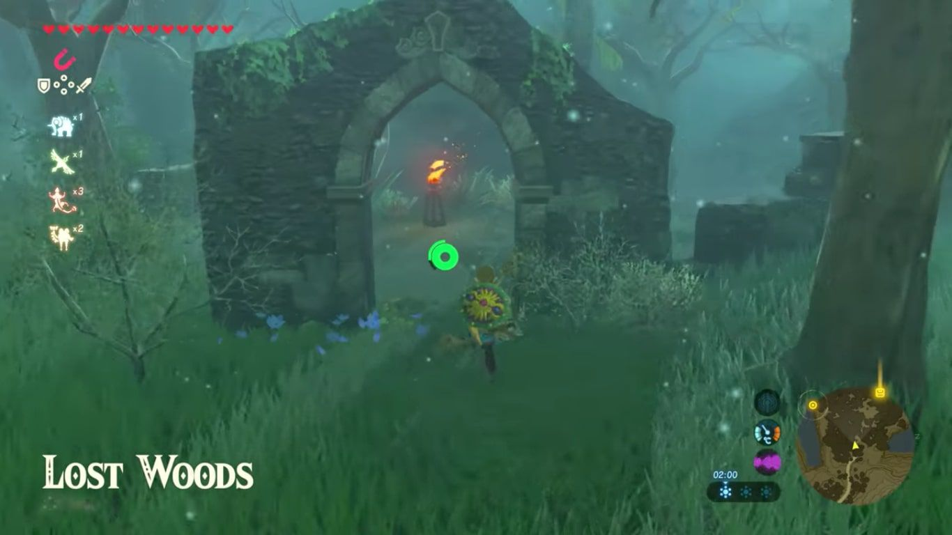 Entrance to The Lost Woods in Zelda: Breath of the Wild