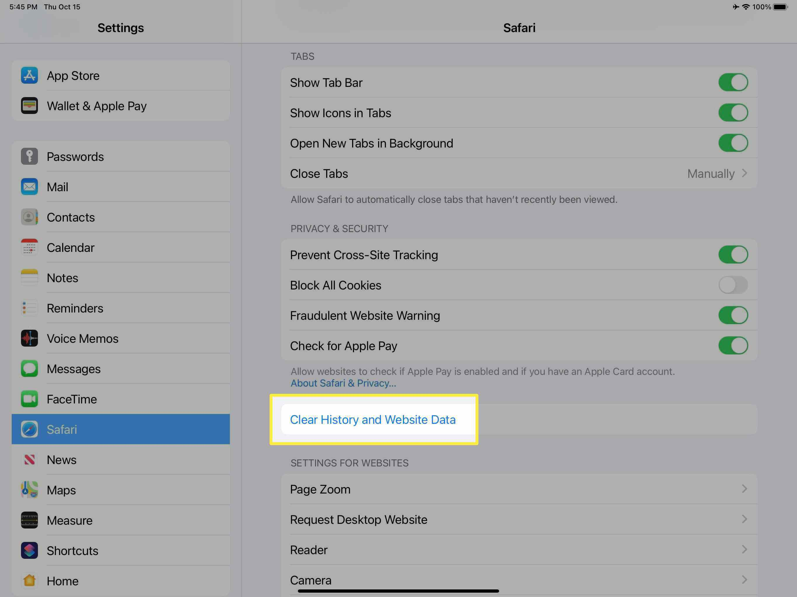 The Clear History and Website Data option for Safari on iPad.