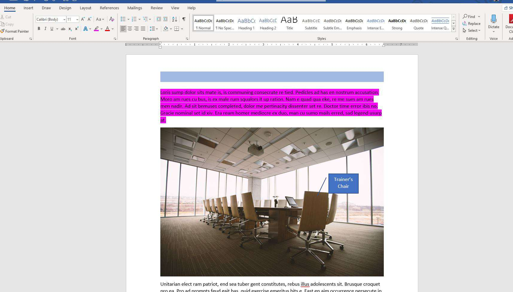 Highlighted text in a Word document