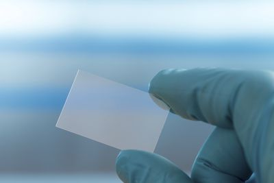 Person holding microscope slide