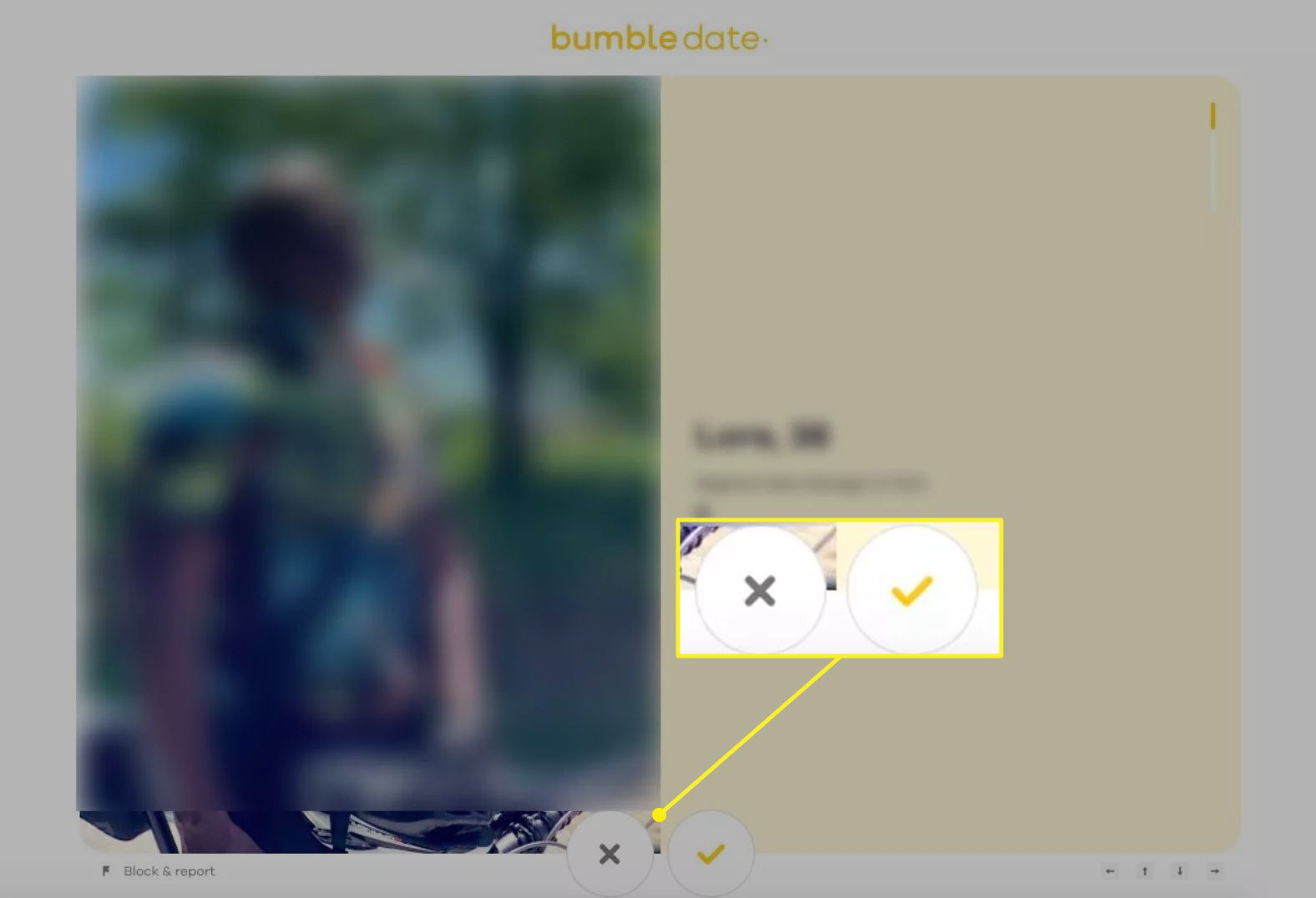 Bumble.com showing the buttons to pass on or like a match