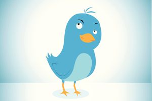 Blue bird, representing Twitter, with a wry look