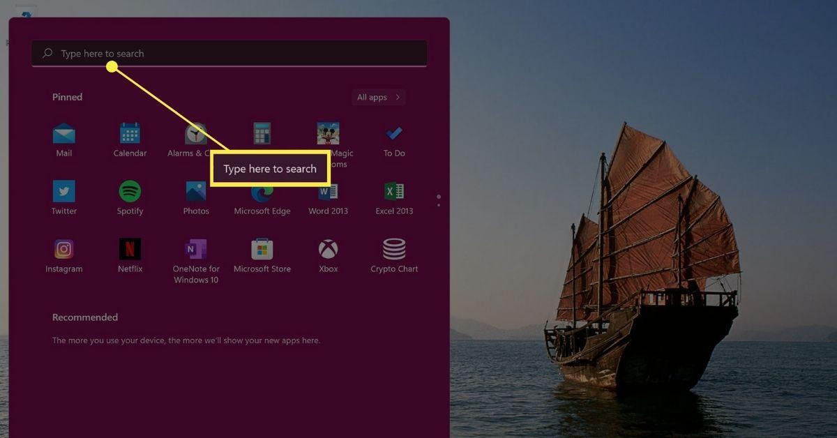 Windows 11 Start menu Search box.