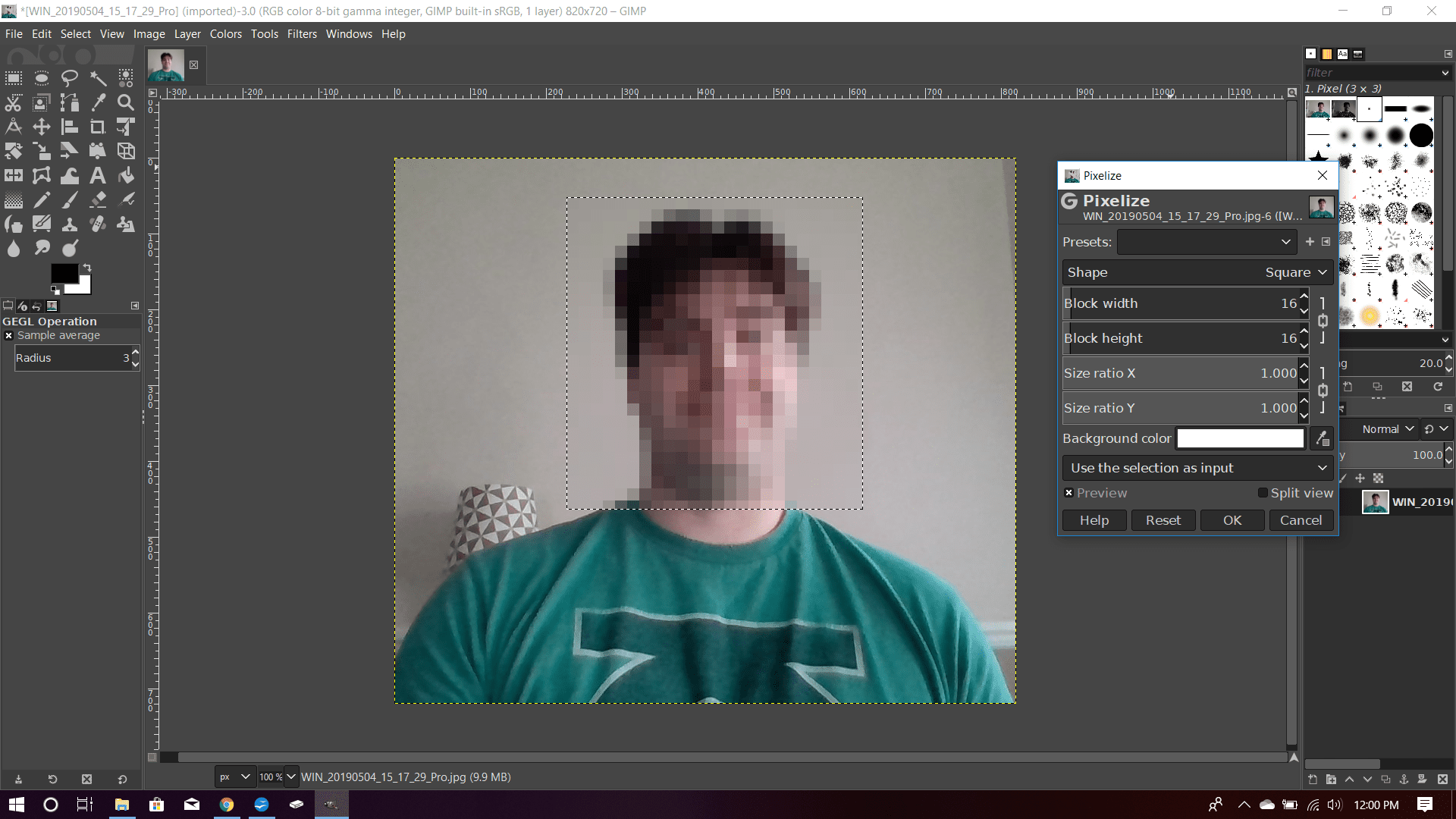 A photo in GIMP with an area chosen by the Rectangle Select Tool