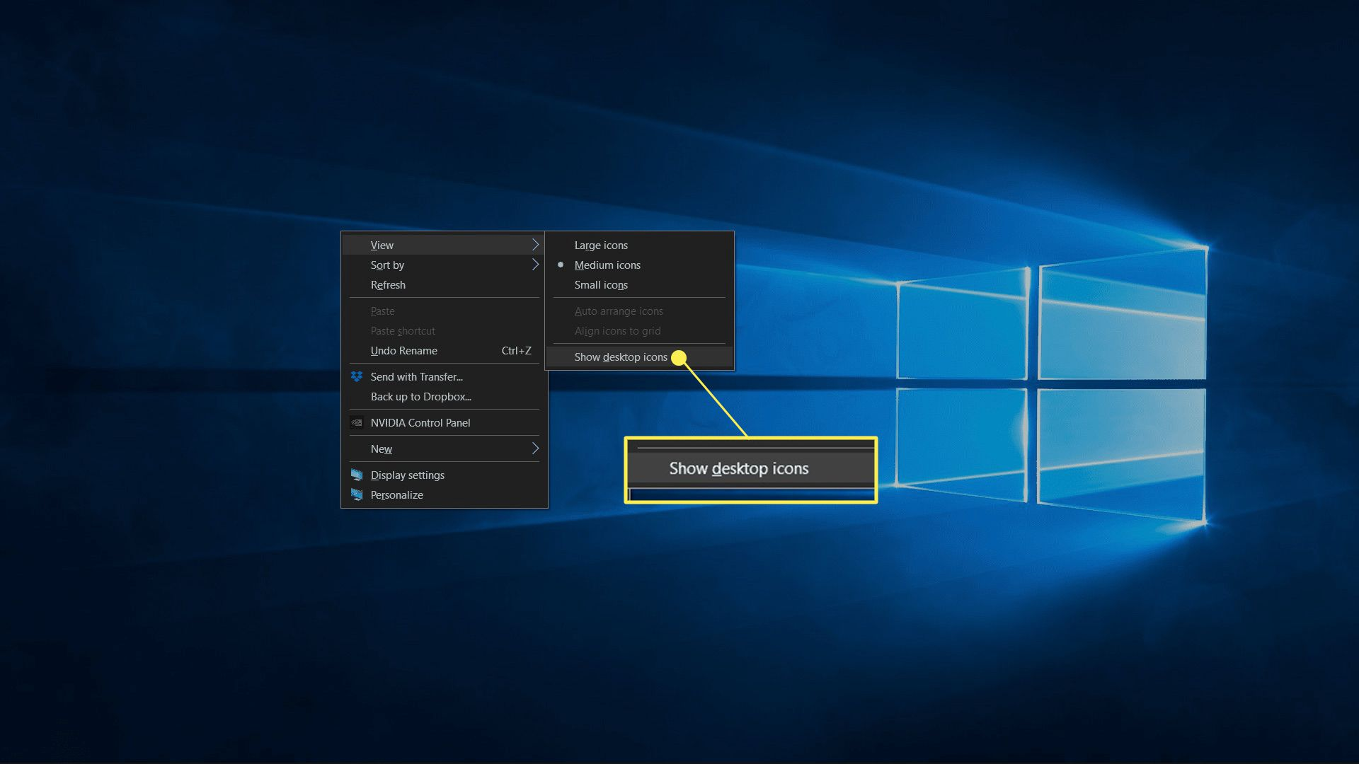 Desktop icons hidden in Windows 10 with Show Desktop Items unchecked highlighted