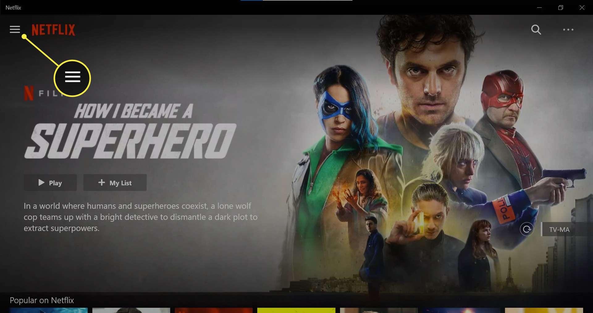 Home menu on Netflix Windows app.