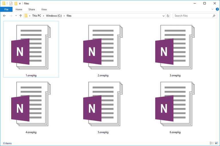 Screenshot of several ONEPKG files in Windows 10 that MS OneNote uses