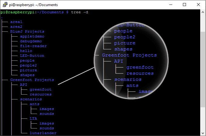 The Tree command is a handy way to view the structure of your directories