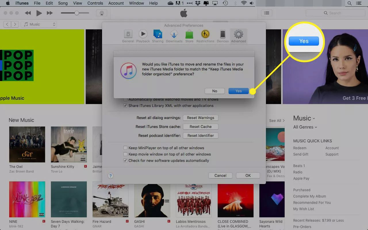 Confirmation window in iTunes with the Yes button highlighted