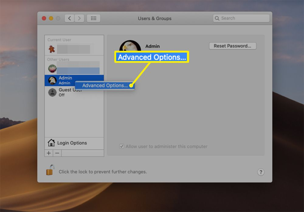 Advanced Options for individual users from Users & Groups settings on macOS