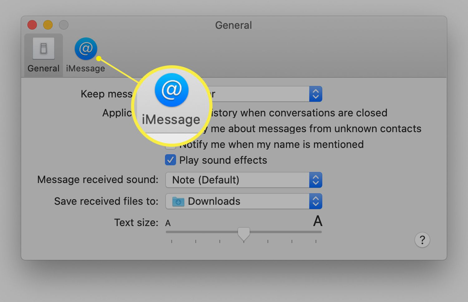Messages general preferences on Mac showing iMessage tab icon