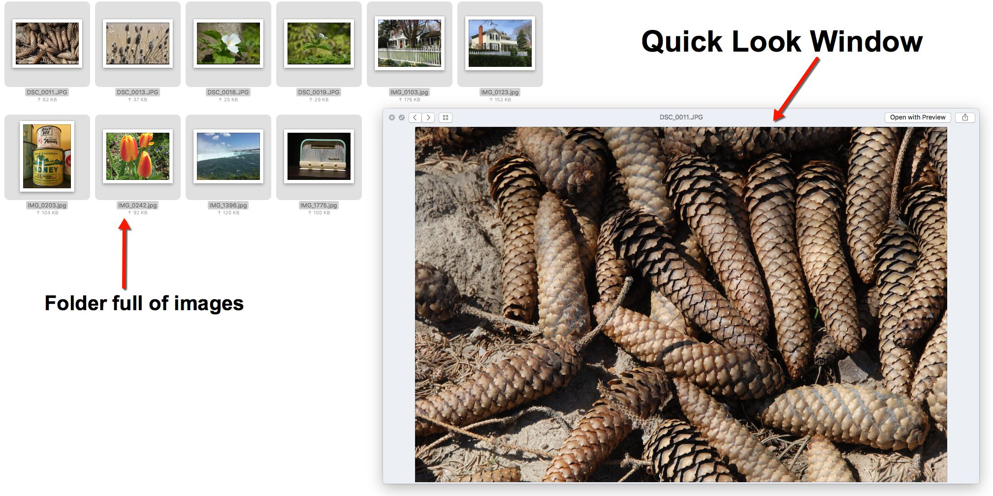How to View an Image Folder With Quick Look in Mac Os X