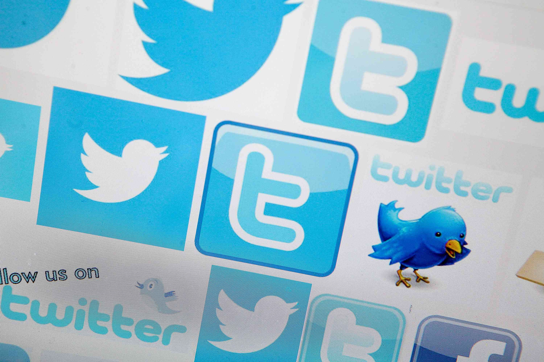 Twitter bird and logo
