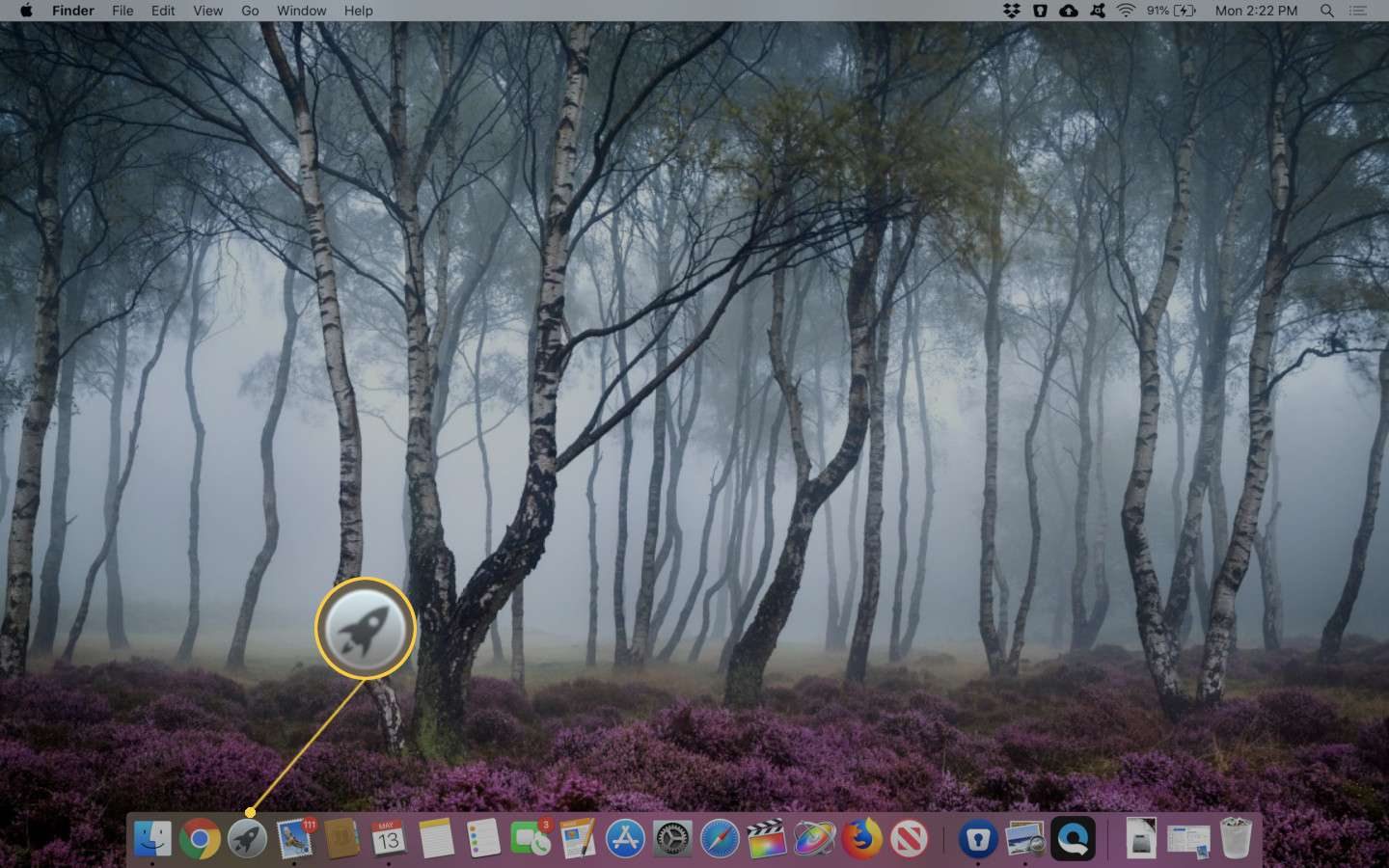 Screenshot of the Launchpad icon in the macOS dock.