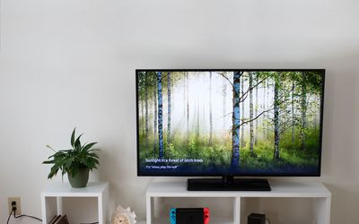 cheaper 9ddc2 fc9b3 The 9 Best TV Stands of 2019