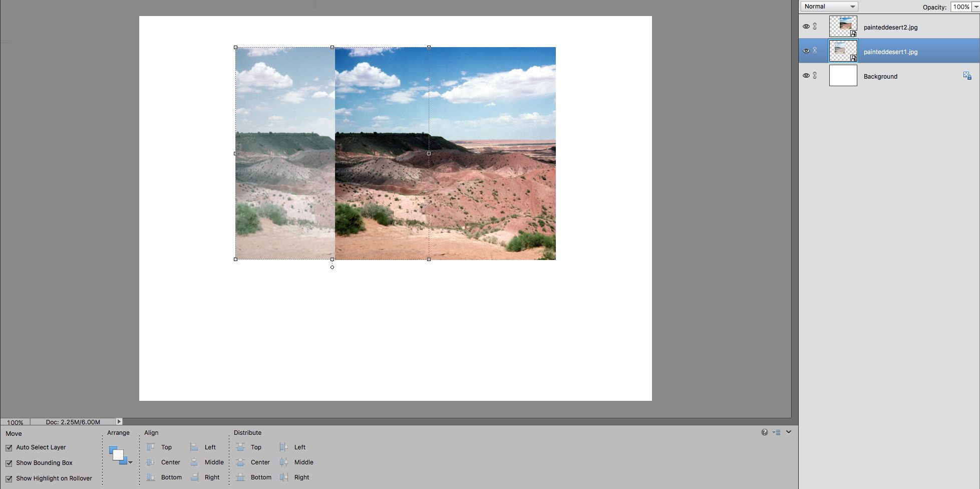 screenshot showing the bottom photo is scaled to match size of the top photo in photoshop elements