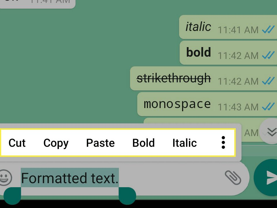How To Use Bold Italics And Strikethrough In Whatsapp