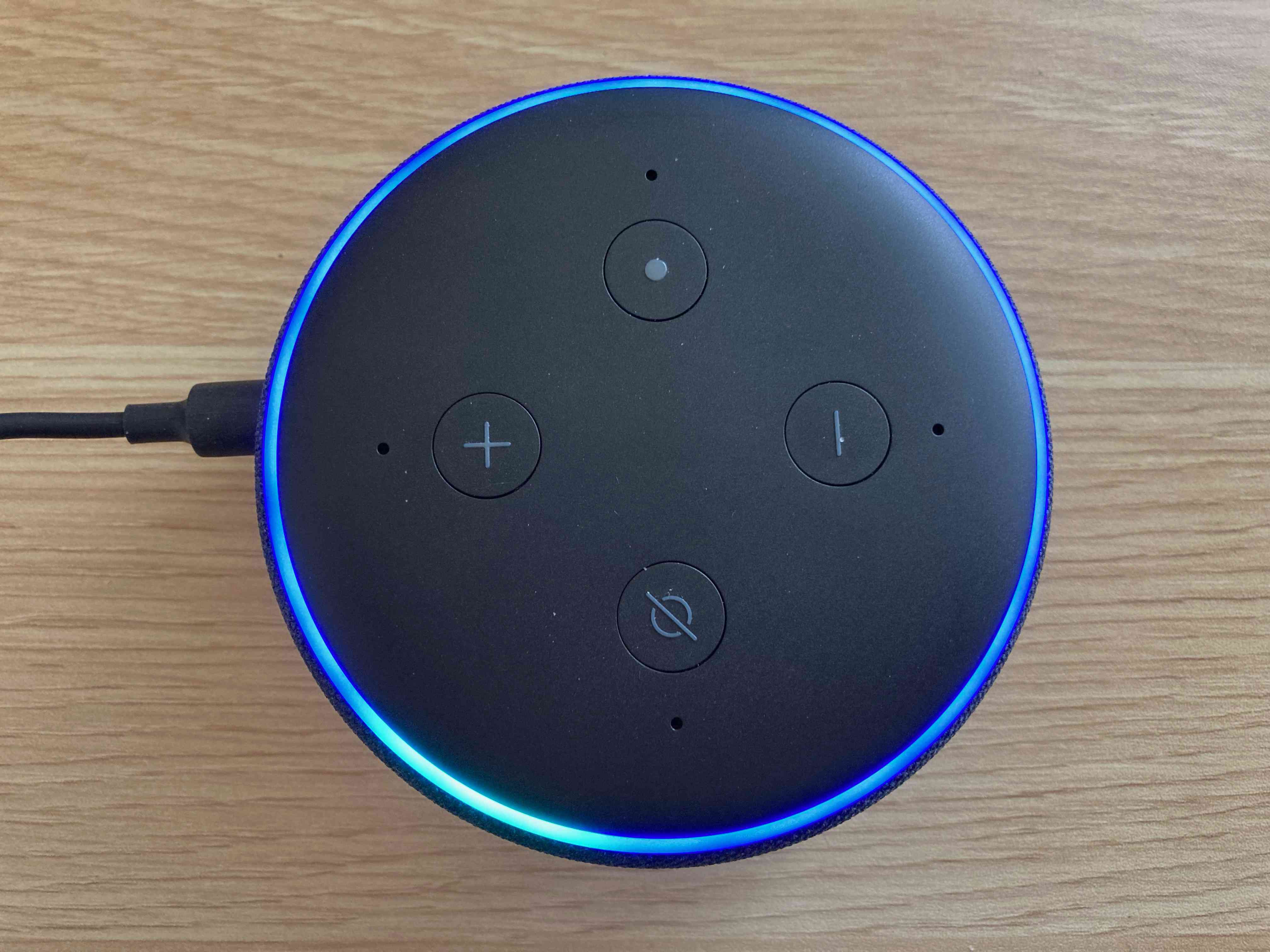 A powered on Echo Dot.