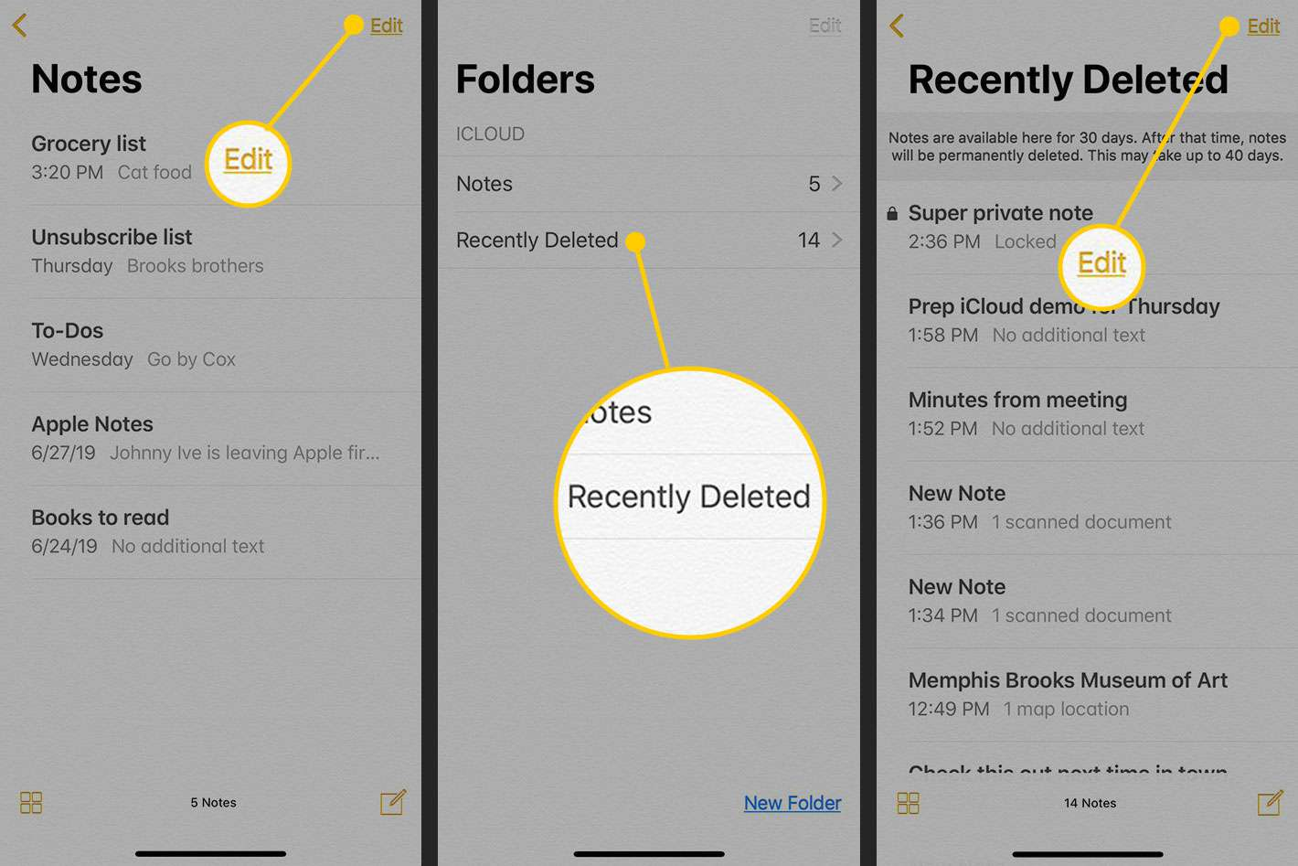 Recently Deleted folder in the Notes app for iOS