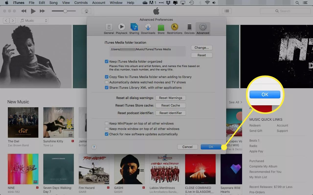 iTunes Advanced preferences with the OK button highlighted