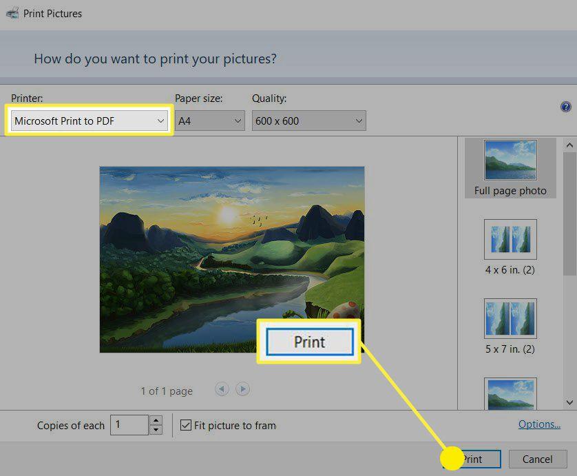 Microsoft Print to PDF Dialog