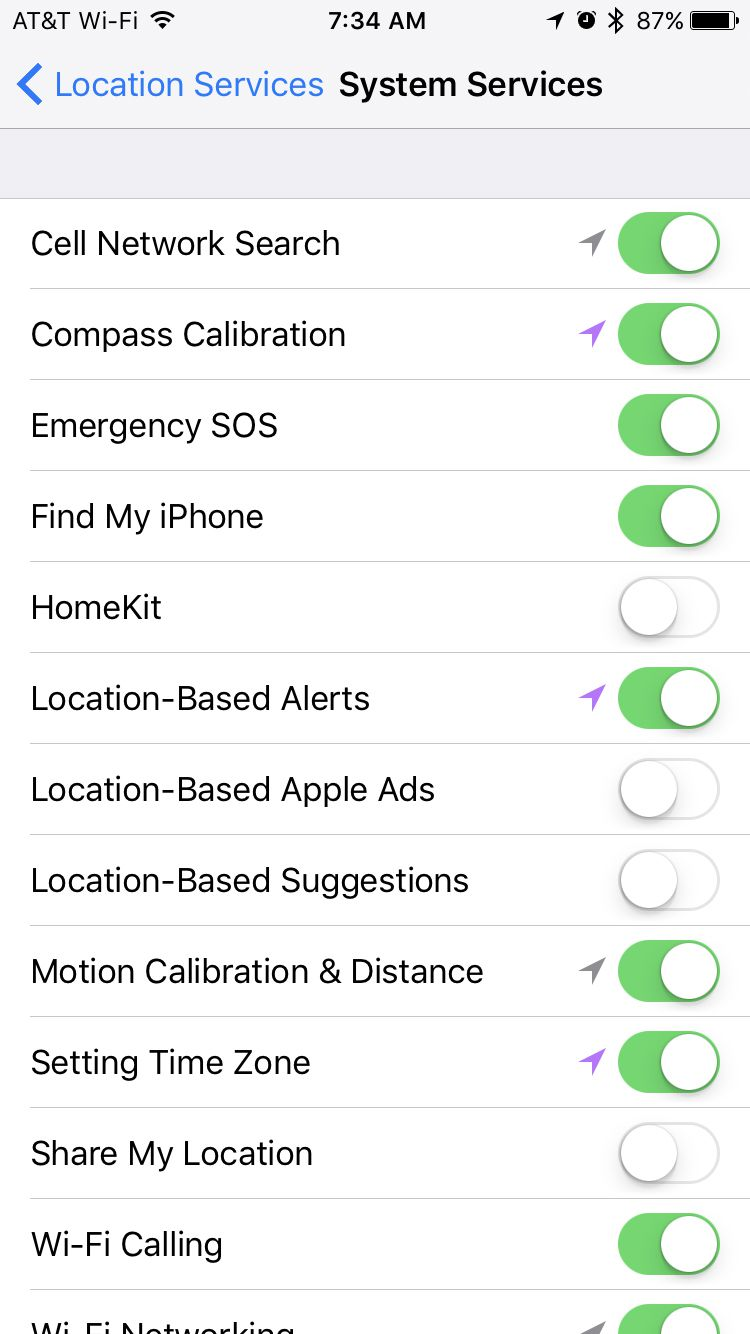 system services screen on iPhone