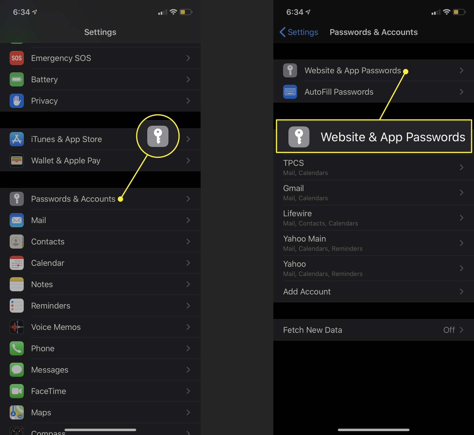 iPhone settings with the Passwords & Accounts and Website & App Passwords options highlighted