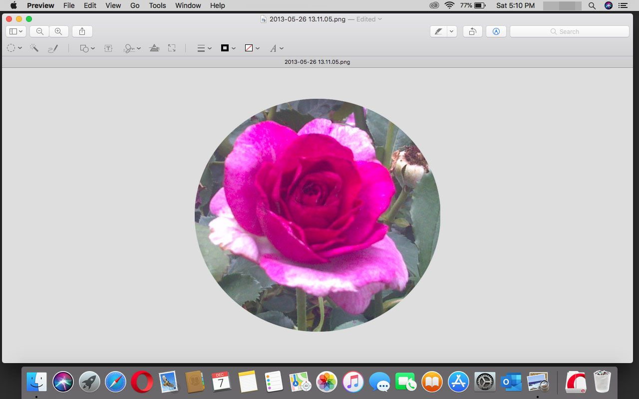 A completed circle crop in Preview in macOS