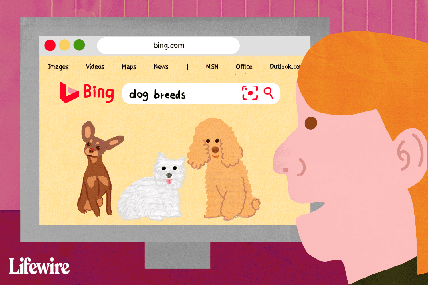 Person searching 'dog breeds' on Bing
