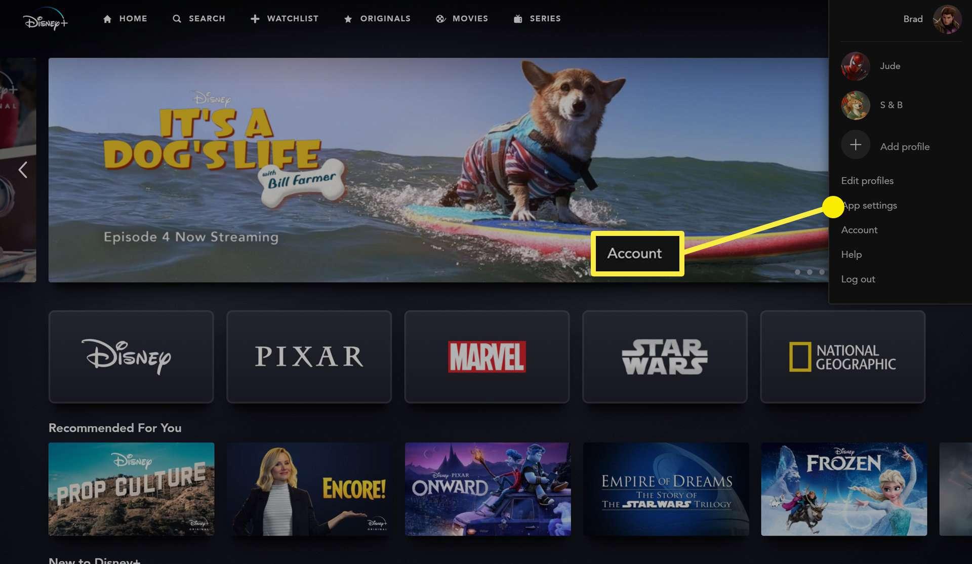 Disney Plus website account menu.