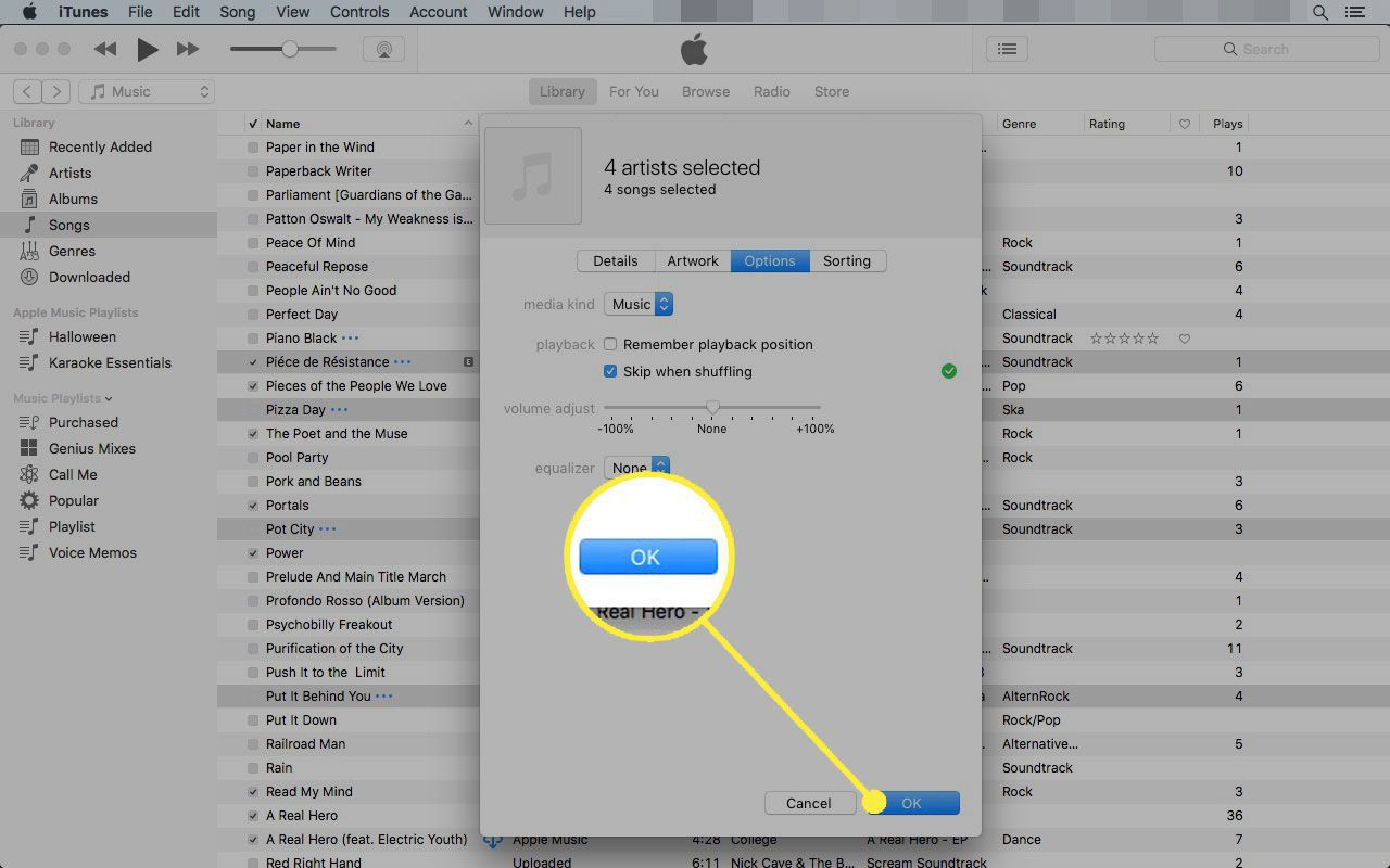 Options tab in iTunes' Get info box with the OK button highlighted