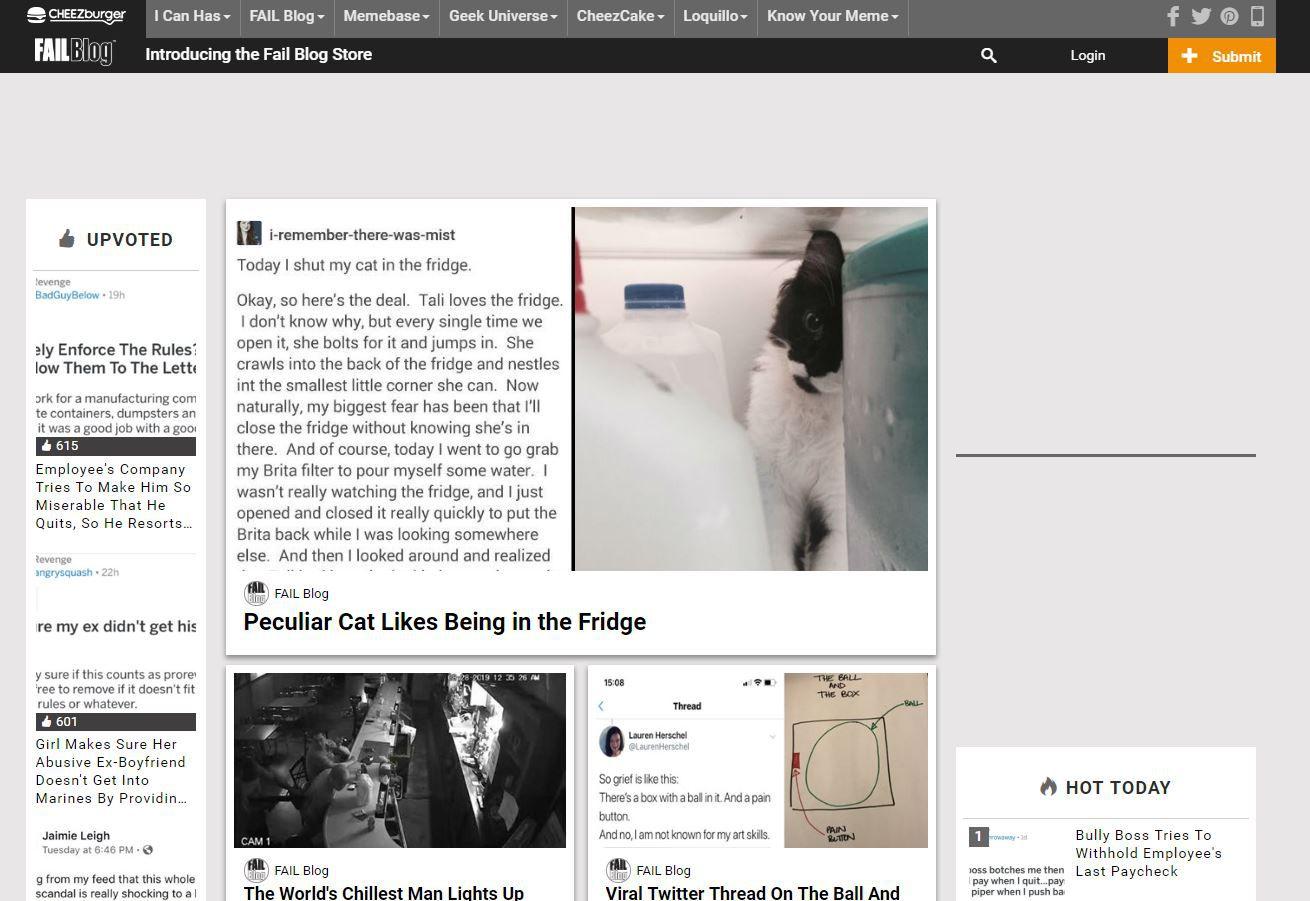 FailBlog website