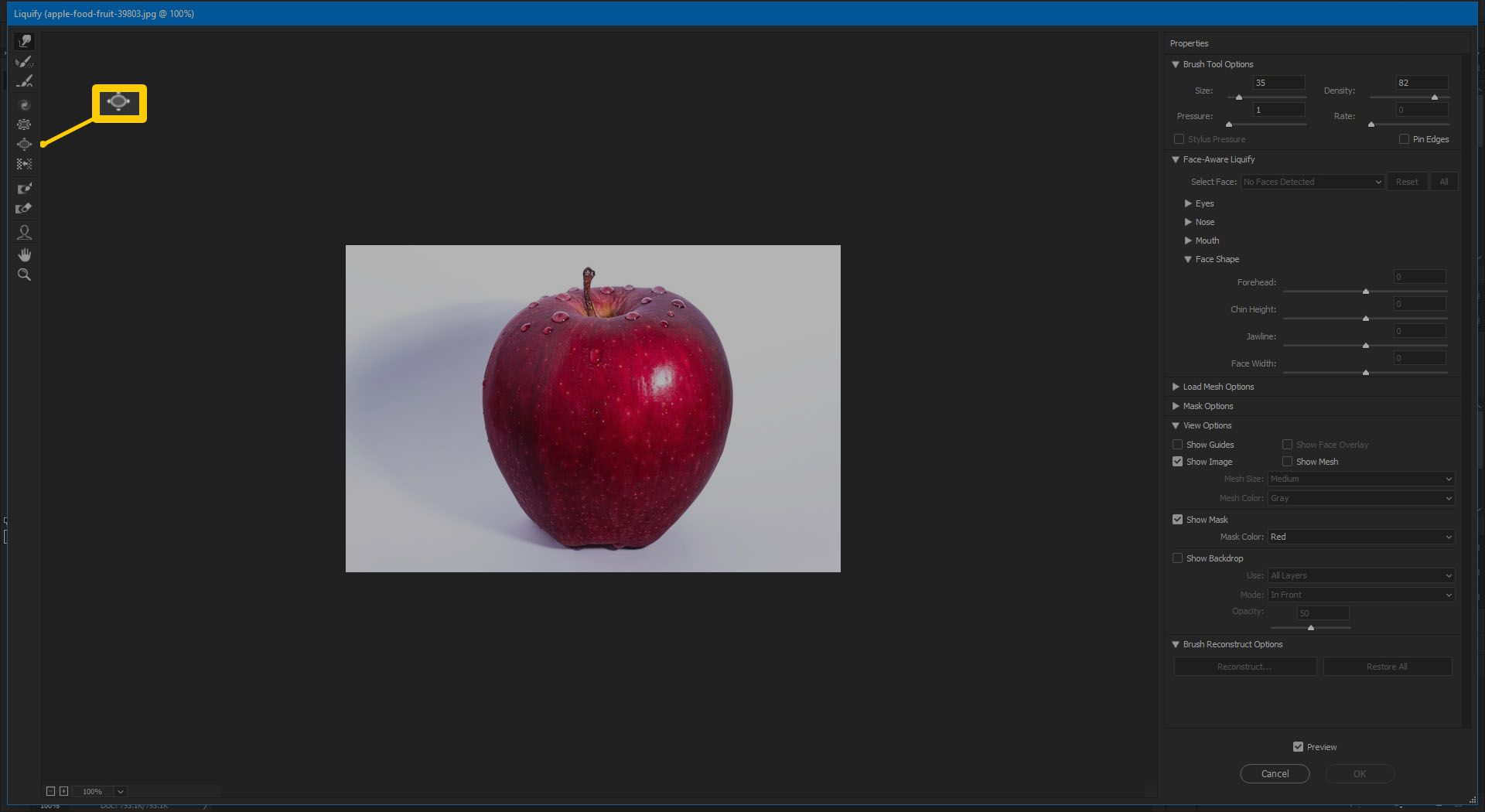 Screenshot of the Bloat Tool in Photoshop CC 2019.