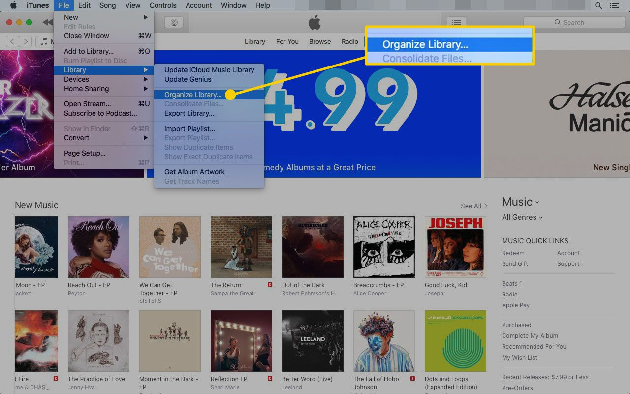iTunes on a Mac with the Organize Library option highlighted