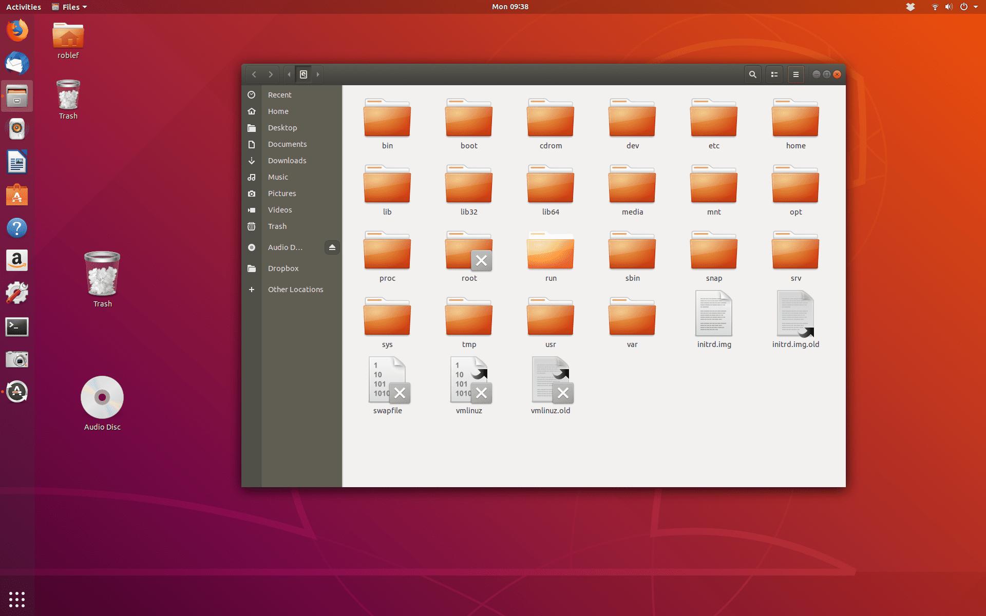 Root directory on Ubuntu Linux desktop