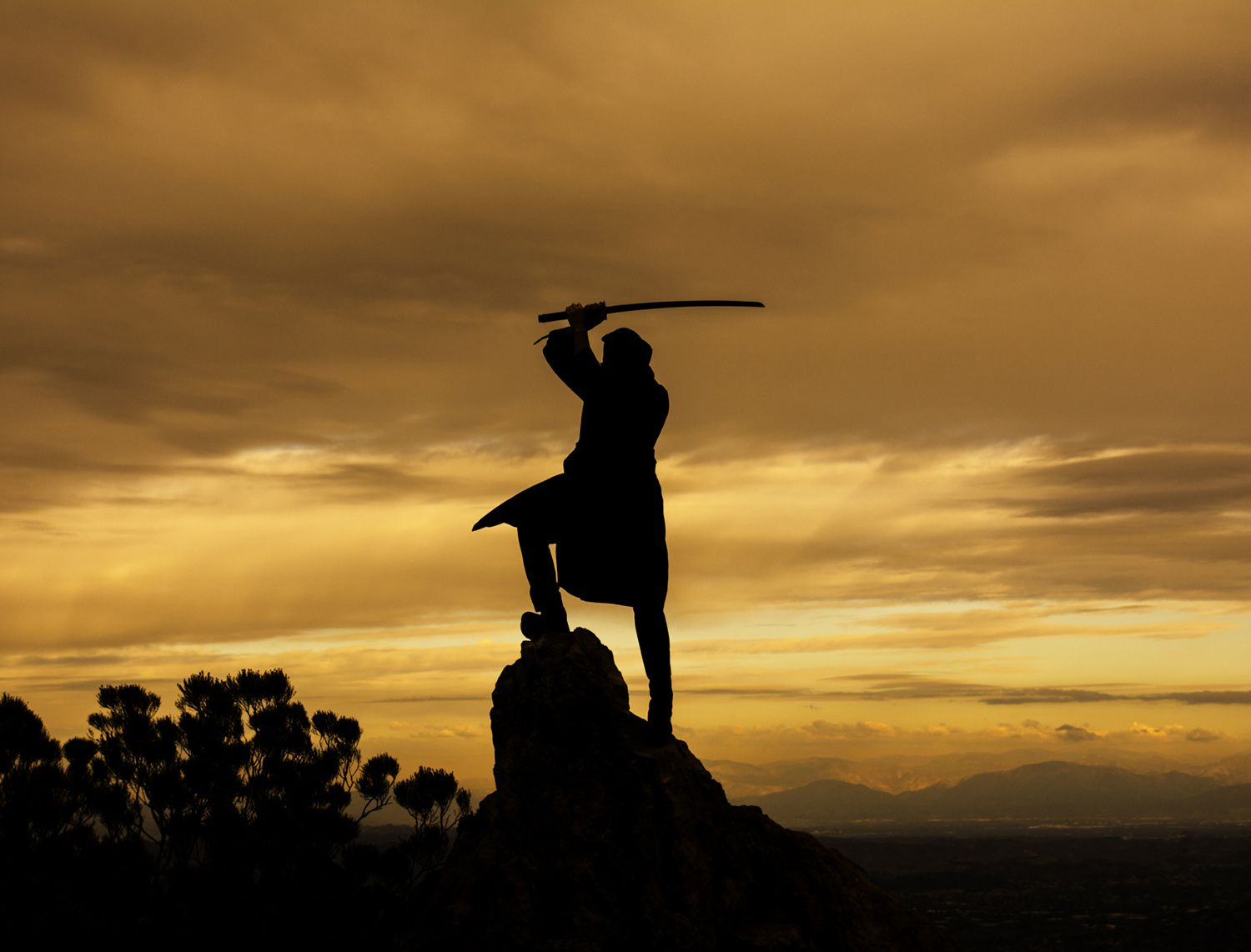 Silhouette of a man wielding a sword above his head standing dramatically on a rock