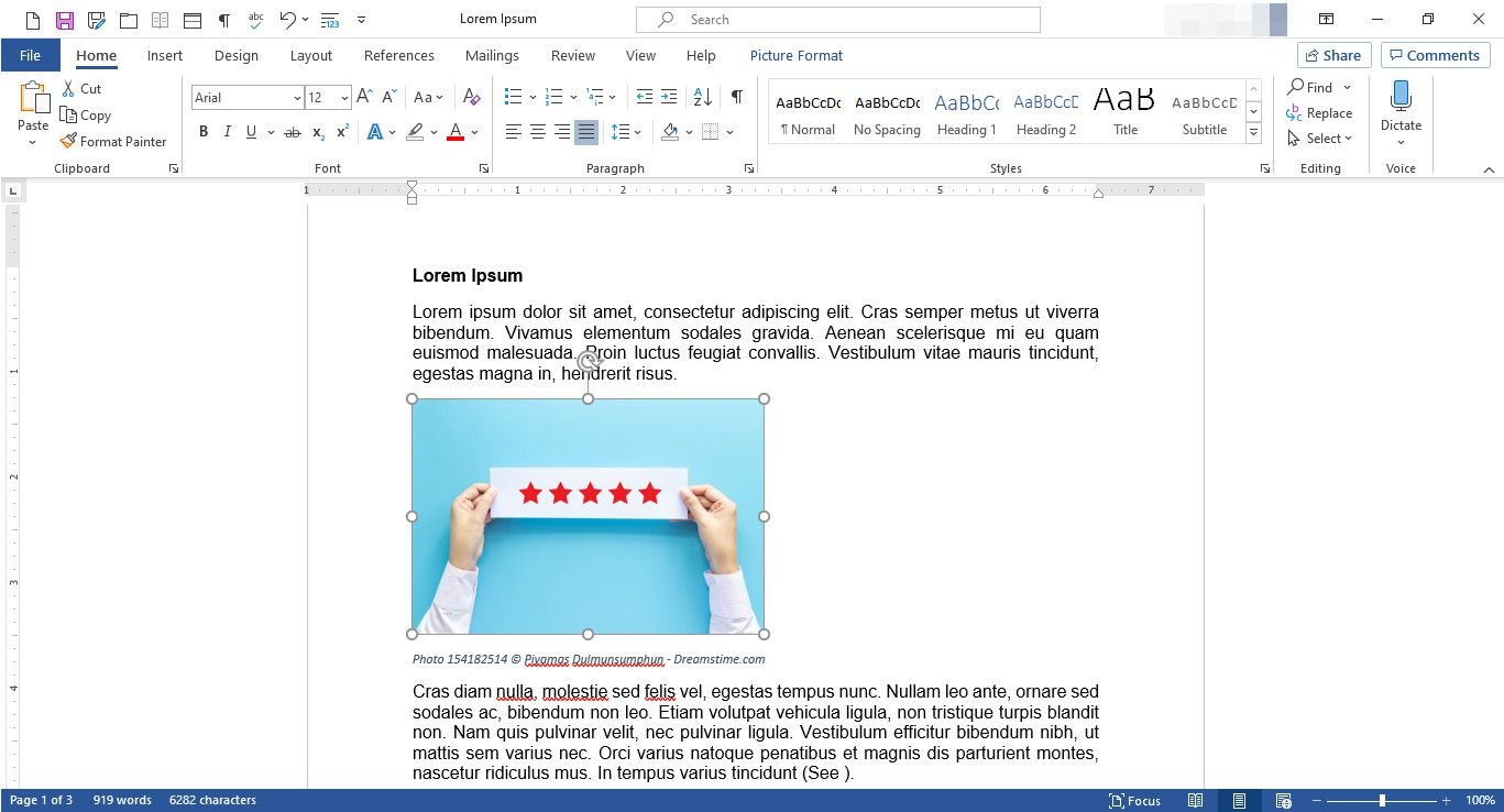 MS Word document with image resizing handles displayed