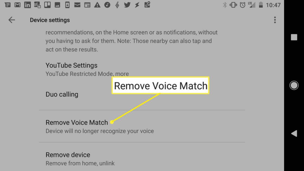 Screenshot of Google Home device settings