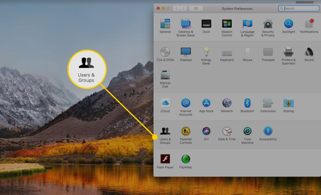 Users & Groups in Mac System Preferences