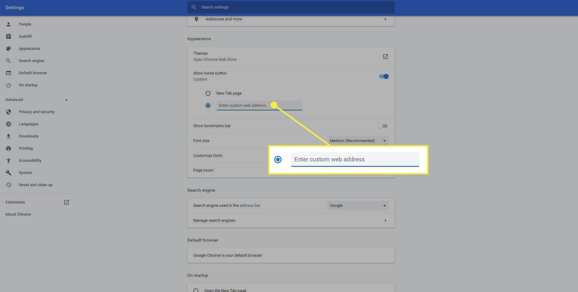 The Enter Custom Web Address option