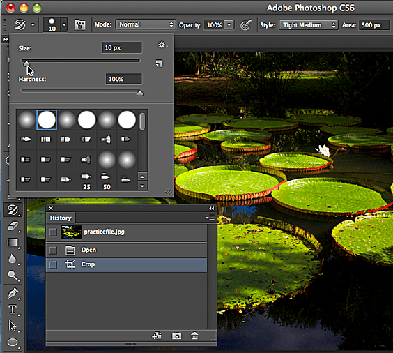 Turn a Photo Into a Painting With in Photoshop