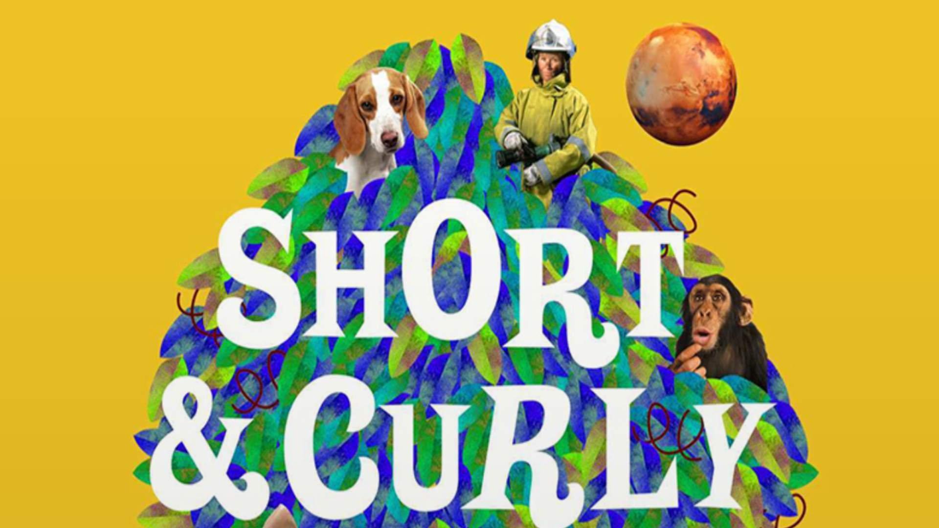 Short & Curly safe kids podcast