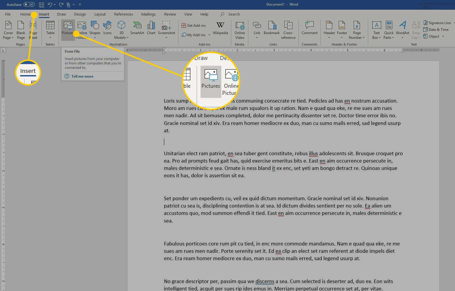 Microsoft Word with the Insert and Pictures options highlighted