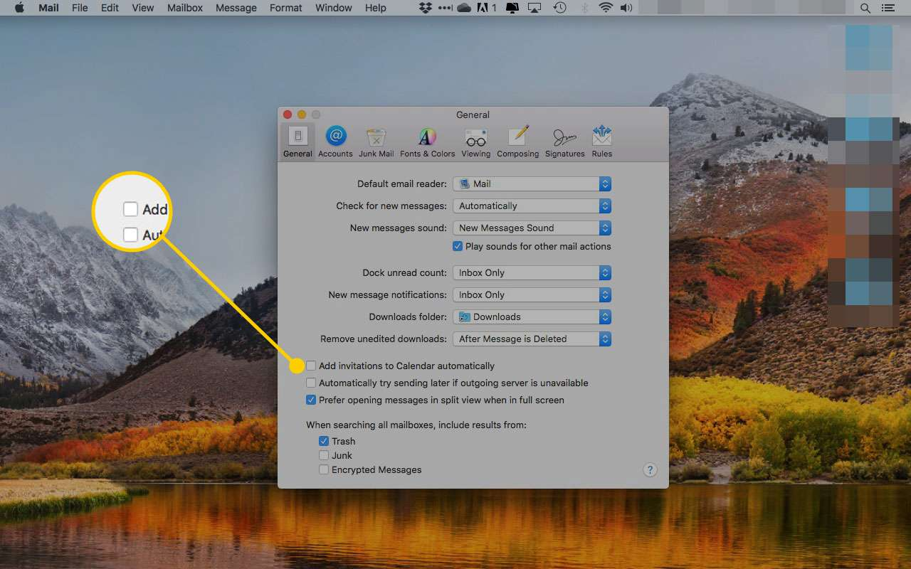 macOS Mail general preferences with the