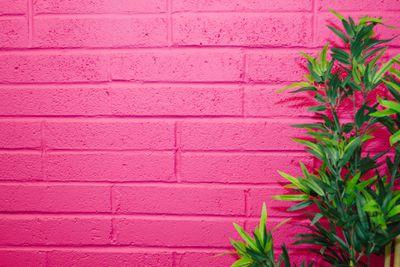 A fuchsia-painted wall.