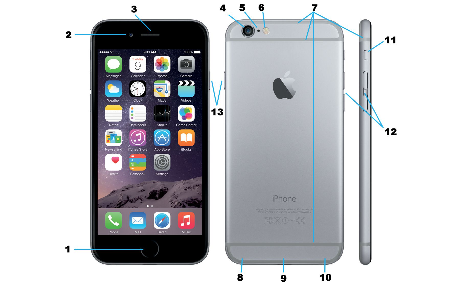 iphone 6 series buttons and ports diagram