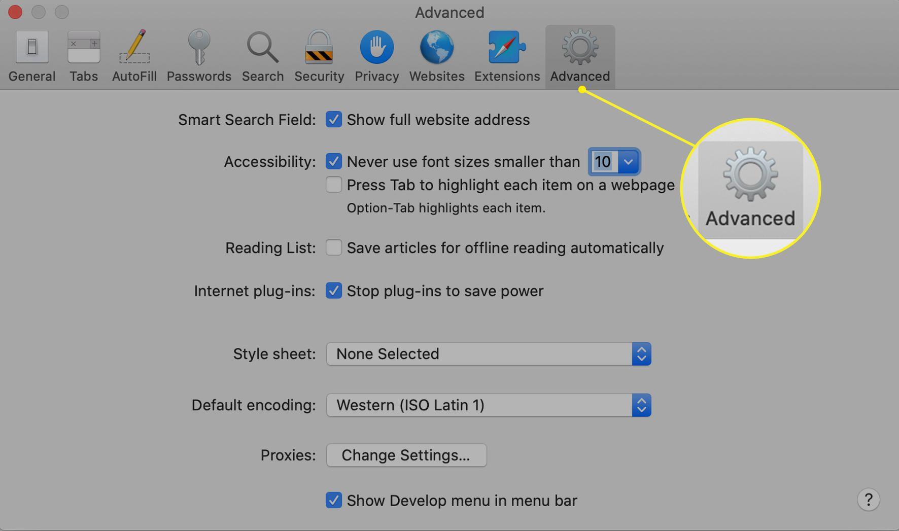 Safari preferences screen with Advanced tab selected