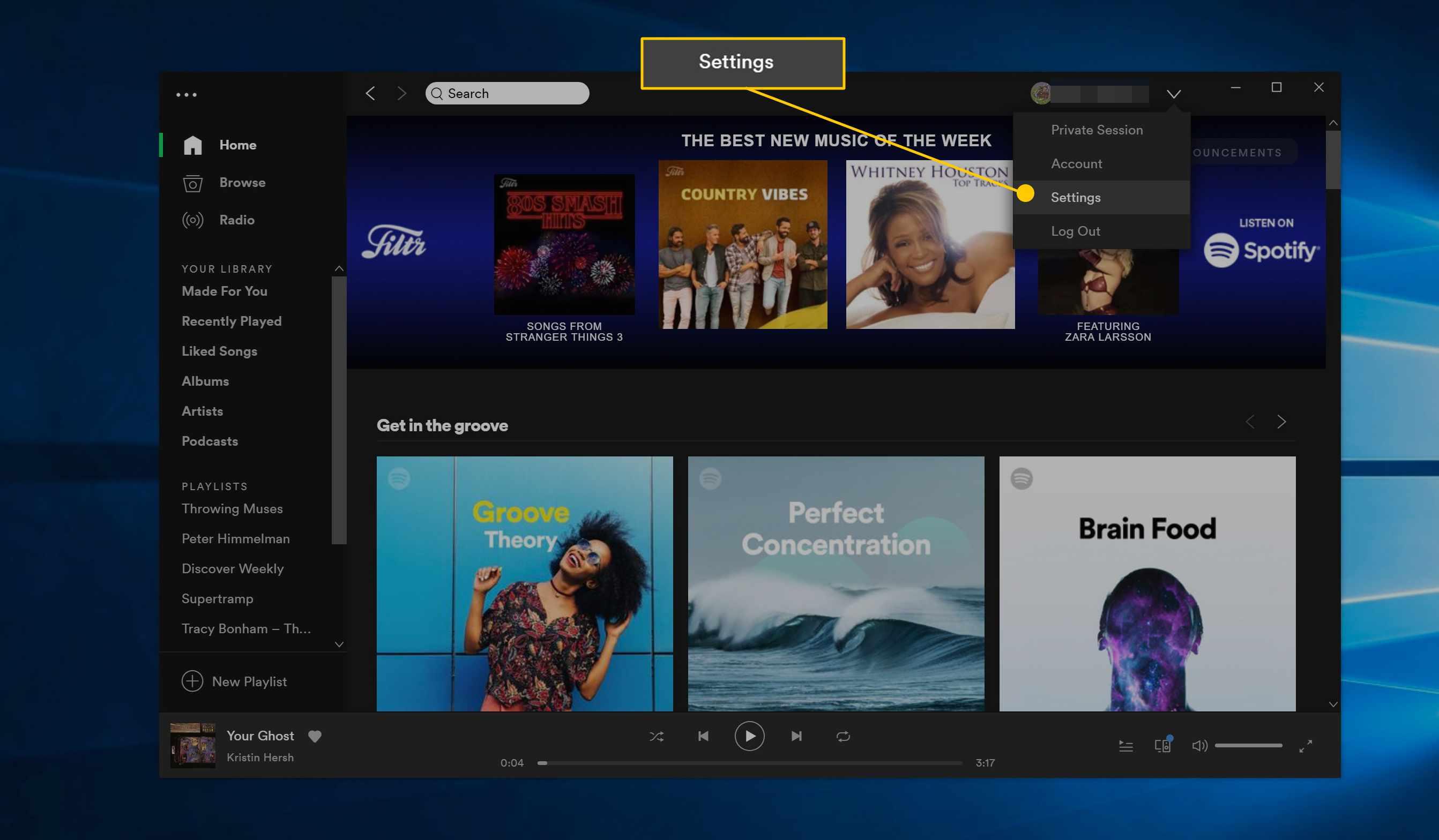 Settings menu item in Spotify